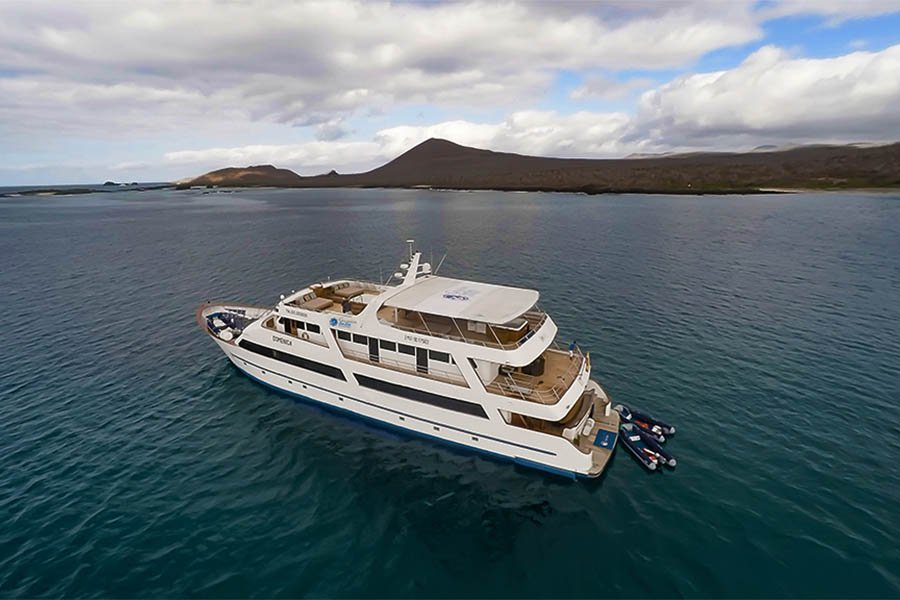 Sea Star Yacht Journey, Galapagos