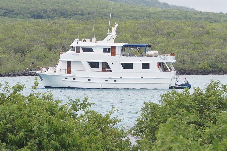 Darwin Yacht, Galapagos