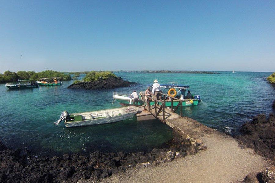 Tour Isabela